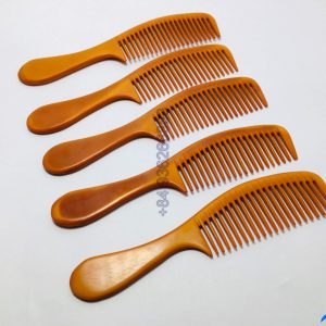 Ion-Comb0042