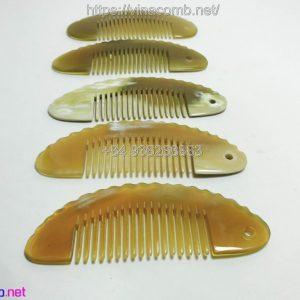 Comb2 0002